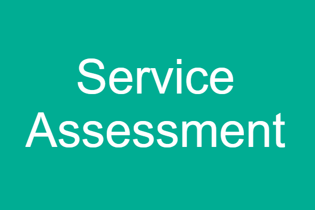 "Text saying ""Service Assessment"" with DHSC approved brand colours"